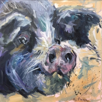 "Happy Hog Day, 16""X16' Oil on gallery wrapped canvas, $300.00, By Karen Pannabecker"