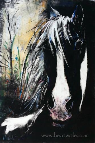 horse dark web