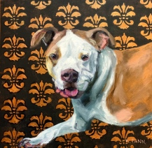 "Pet Portraits (sample) 16""X20"" or 18""X18"" Oil on Gallery wrapped canvas. $350.00, By Karen Pannabecker, Custom sizes available"